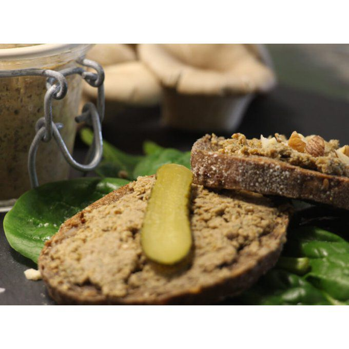 terrine-insectes-comestibles-framboise-pate-tranche